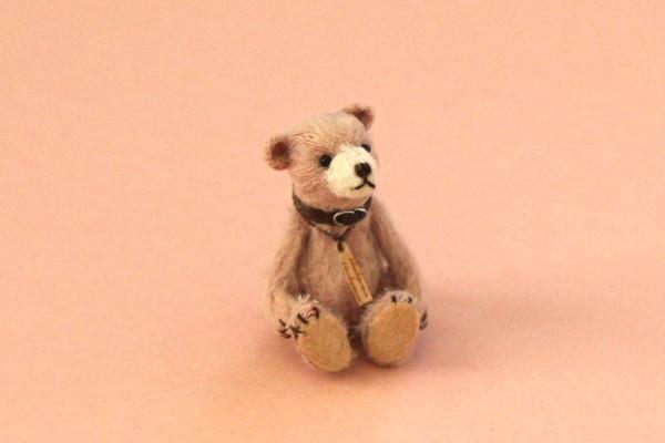 teddysakura