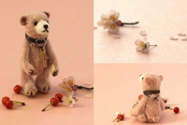 teddysakura2