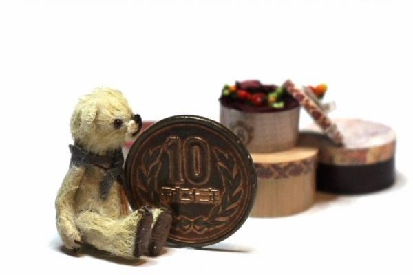 teddyvegetable10