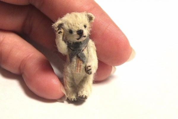 teddyvegetable12