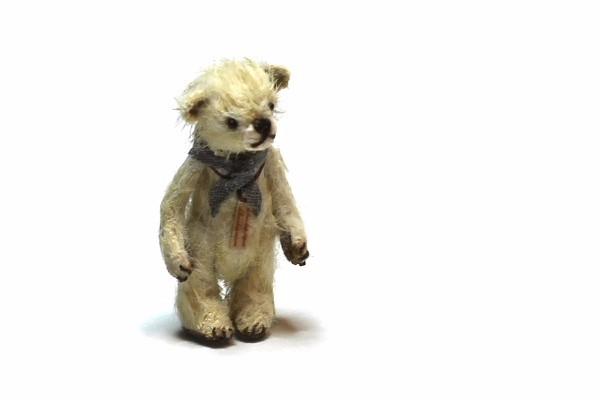 teddyvegetable13