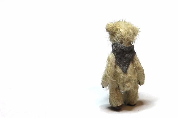 teddyvegetable15
