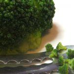 ミニチュア 食品サンプル ねこさまランチ ブロッコリー 粘土