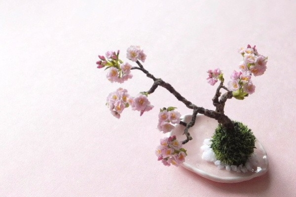 flower53