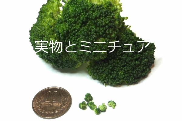 yasai25