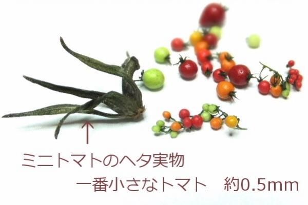 yasai27