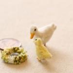 duck1603283