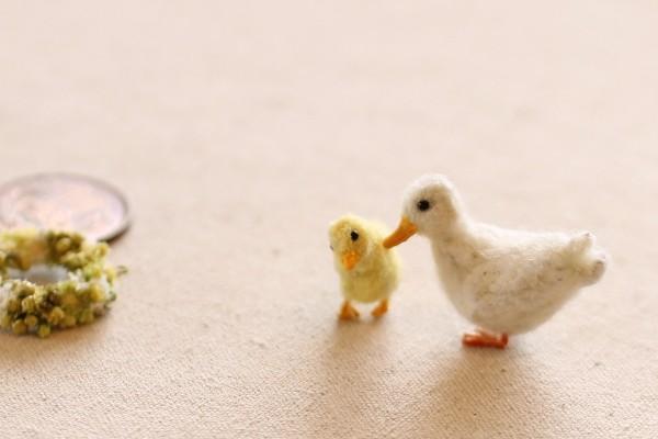 duck1603284