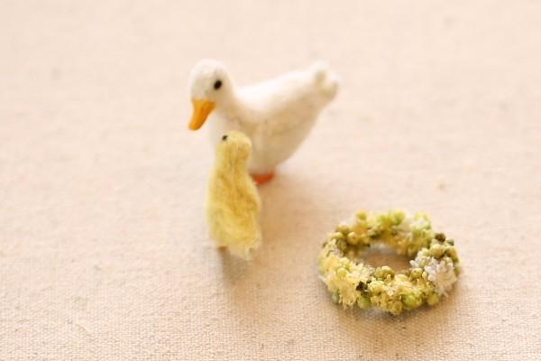 duck1603289