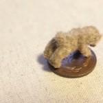 teddybear1603101