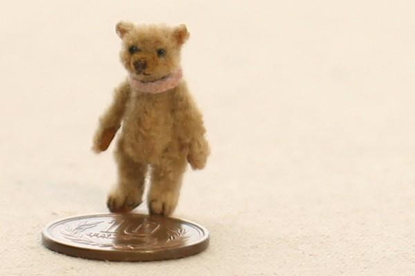 teddybear16032011