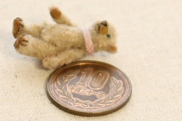 teddybear1603207