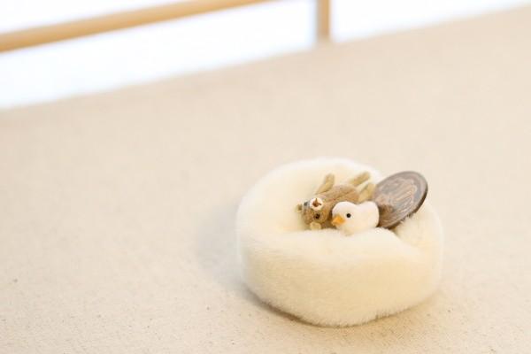 teddybear1604262