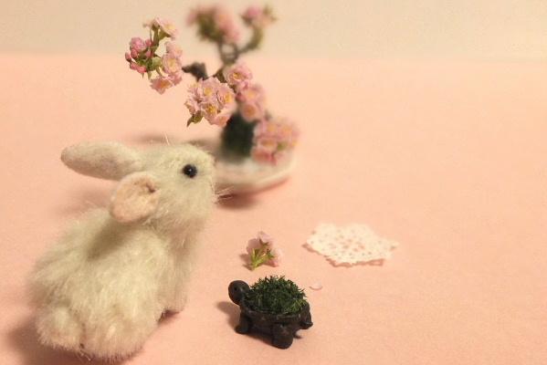 usagi sakura うさぎ カメ 桜 盆栽 ミニチュア