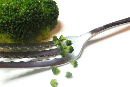 ミニチュア 食品サンプル 野菜 ブロッコリー broccoli