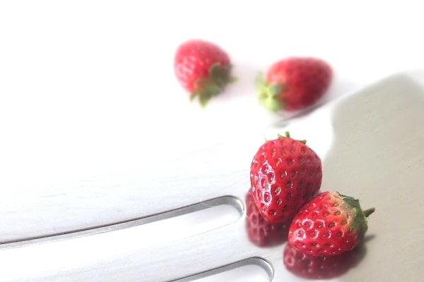 strawberry イチゴ ミニチュアフード 食品サンプル