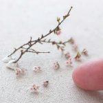 sakura ミニチュア 桜 サクラ