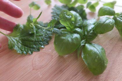 green 無農薬野菜 バジル 大葉 ペパーミント