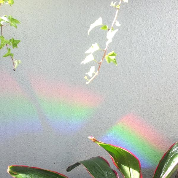 rainbow 虹 虹の端っこ