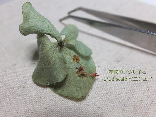 flower ミニチュア アジサイ