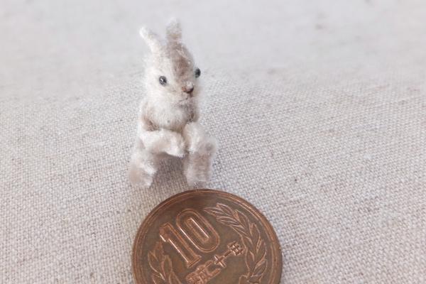 rabbit ミニチュア うさぎ
