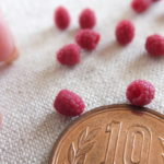 raspberry ミニチュアフード ラズベリー