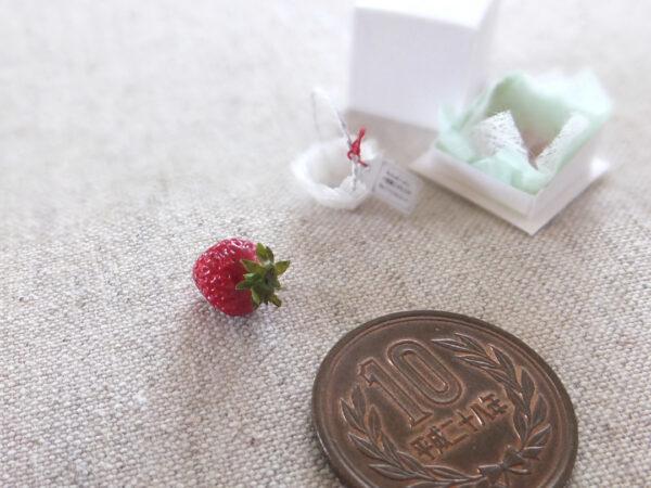 miniature strawberry ミニチュア イチゴ