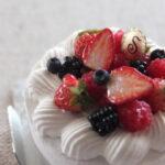 ミニチュア ベリーケーキ miniature berry